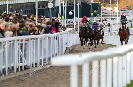 Trade Stands Cheltenham Festival : Cheltenham festival day horse racing stock photos exclusive
