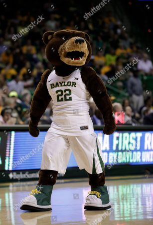 Baylor Mascot Bruiser Motivates Fans During Firstround Editorial