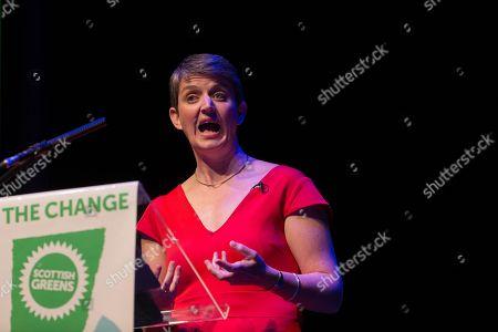Maggie Chapman, Scottish Greens Co-Convenor