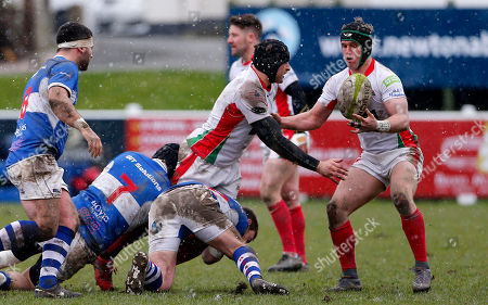 Editorial photo of Plymouth Albion v BishopÕs Stortford, Plymouth, UK - 17 Mar 2018