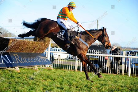 Stock Image of DOWN ROYAL. EDDIES MIRACLE and Barry O'Neill lands over the last fence to win for trainer David Christie.