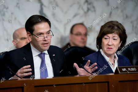 Marco Rubio, Susan Collins. Sen. Marco Rubio, R-Fla., left, accompanied by Sen. Susan Collins, R-Maine, right, speaks as Homeland Security Secretary Kirstjen Nielsen and former Homeland Security Secretary Jeh Johnson appear before a Senate Intelligence Committee hearing on election security on Capitol Hill in Washington