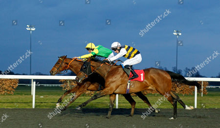 ONE COOL DADDY (farside, Jack Duern) beats BURRUMBEET (nearside) in The Better Odds With Matchbook Novice Stakes Div1 Kempton