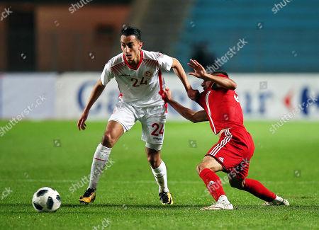 Saif-Eddine Khaoui and Milad Mohammadi