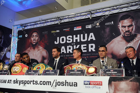Anthony Joshua, Eddie Hearn, David Higgins, Joseph Parker, Kevin Barry, Adam Smith
