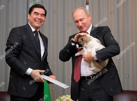 Turkmenistan's President Gurbanguly Berdymukhamedov, right, smiles as he presents a puppy to Russian President Vladimir Putin during their meeting in the Bocharov Ruchei residence in the Black Sea resort of Sochi, Russia, . The presidents met on the sidelines of a summit of leaders of ex-Soviet nations in Sochi