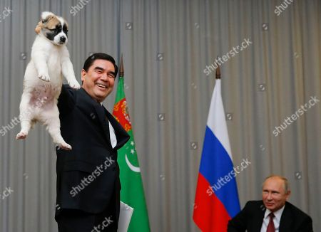 Turkmenistan's President Gurbanguly Berdymukhamedov, left, presents a puppy to Russian President Vladimir Putin during their meeting in the Bocharov Ruchei residence in the Black Sea resort of Sochi, Russia, . The presidents met at the sidelines of a summit of leaders of ex-Soviet nations in Sochi