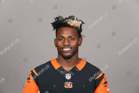 This is a 2017 photo of Jonathan Brown of the Cincinnati Bengals NFL football team. This image reflects the Cincinnati Bengals active roster as of Thursday, May 4, 2017 when this image was taken. (AP Photo)