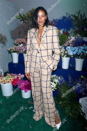 Stock Photo of Selita Ebanks