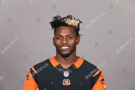 Jonathan Brown of the Cincinnati Bengals NFL football team. This image reflects the Cincinnati Bengals active roster as of when this image was taken
