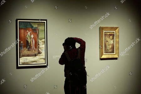 A person takes a picture during the 'Leonora Carrington. Magic Tales' exhibition at the Modern Art Museum, in Mexico City, Mexico, 16 April 2018. British-born Mexican artist, surrealist painter, and novelist Leonora Carrington died on 25 May 2011.