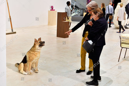 Stock Photo of Visitors look on the artwork 'The Dog and the Drop' (L) by Italian artist Piero Golia on display at the 'Art Cologne' fair at Koelnmesse in Cologne, Germany, 18 April 2018 (issued 19 April 2018). Art Cologne, which is considered the oldest art fair of its kind, started with just 18 galleries in 1967. Nowadays, some 200 commercial galleries come together each spring to present works by more than 2,000 artists. This year, the event runs from 19 to 22 April 2018.