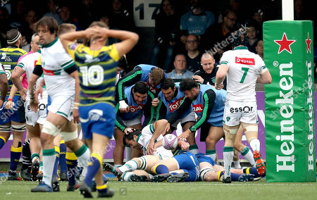 Stock Photo of Cardiff Blues vs Pau. Pau's Conrad Smith celebrates scoring his side's first try with his teammates