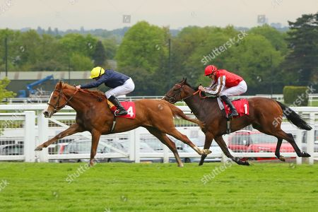 CRYSTAL HOPE (4) ridden by William Buick beating Give And Take in The Nordoff Robbins David Enthoven Memorial Fillies' Novice Stakes at Sandown Copyright: Ian Headington/racingfotos.com