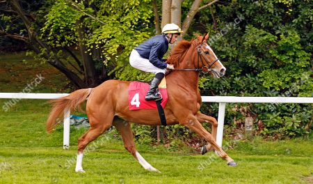 CRYSTAL HOPE (William Buick) before winning The Nordoff Robbins David Enthoven Memorial Fillies Novice Stakes Sandown