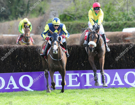 Stock Photo of PUNCHESTOWN MAGIC OF LIGHT and Robbie Power (right) chase down Goodthynemilan (left) to win the Hanlon Concrete Irish EBF Glencarrig Lady Francis Flood Mares Handicap Chase. HEALY RACING