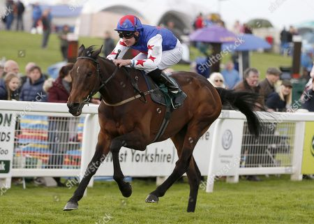 GREAT HALL and Charles Bishop Win The M.C.H. Hutchinson Memorial Handicap for trainer Mick Quinn Ripon Racecourse