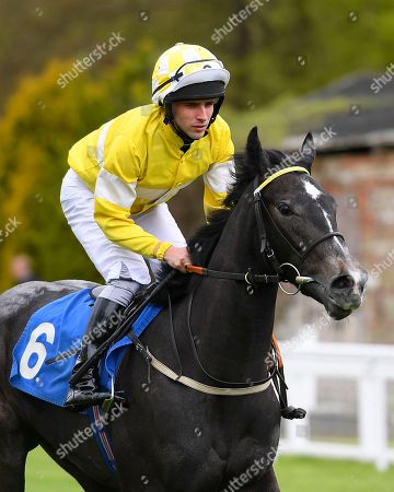 Penniesfromheaven ridden by Jack Duern goes down to the start of  The Betfred Mobile Fillies Conditions Stakes (CLASS 3) (PLUS 10 RACE)  during the Betfred City Bowl Family Race Day at Salisbury Racecourse on 29th April 2018