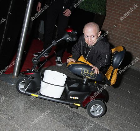 Stock Picture of Verne Troyer