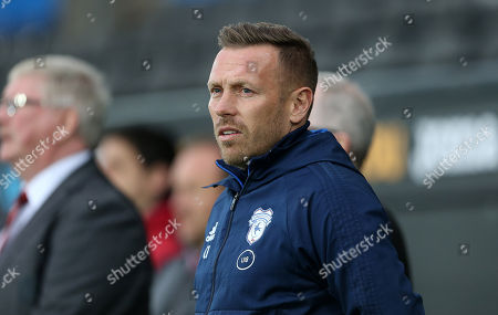 Cardiff Manager Craig Bellamy.