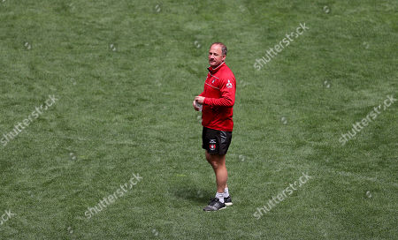 Director of Rugby David Humphreys