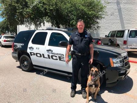 This undated photo provided by the Houston Police Department in May 2018 shows K-9 Rony with his handler, police officer Dennis Shadden. On, the American Kennel Club announced that it has chosen the late K-9 Rony and another from San Diego for Paw of Courage awards