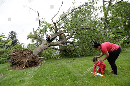 Ryan Lee, left, and Christen Lee, right, play with their son Chris Lee, 5, around two large trees that were damaged during a storm in Newburgh, N.Y., . Powerful storms pounded the Northeast on Tuesday with torrential rain and marble-sized hail, leaving at least two people dead and hundreds of thousands of homes and businesses without power