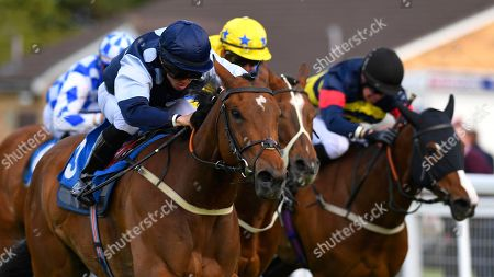 Winner of The Shadwell Stud Racing Excellence Apprentice Handicap Moorovertheridge left ridden by Harry Burns and trained by Grace Harris  during Afternoon Racing at Salisbury Racecourse on 17th May 2018