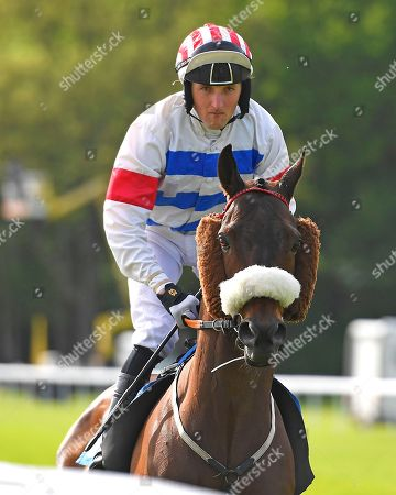 Mr Lando ridden by Tim Clark goes down to the start of The Smith & Williamson Handicap (Class 6)     during Afternoon Racing at Salisbury Racecourse on 17th May 2018