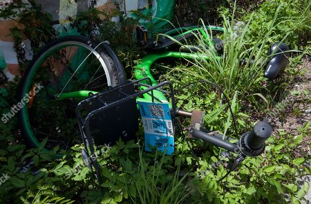 An abandoned bicycle that belongs to Hobee.bike, a bike sharing app, lies in long grass by the side of the road in Tseung Kwan O, New Territories, Hong Kong, China, 19 May 2018. Many start-up technology companies running bicycle rentals in Hong Kong are facing an increasing public backlash due to mounting problems such as theft, vandalism, a lack of parking spaces, poor cycling etiquette, and bicycle abandonment. Bicycles belonging to Hong Kong bike rental start-ups are being left randomly around Tseung Kwan O, blocking paths or roads, creating a nuisance for residents and a public relations headache for the city?s nascent sharing economy.