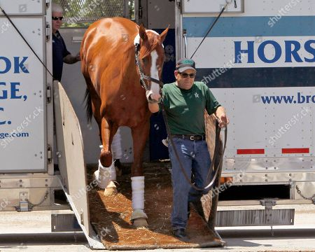 Assistant trainer Jimmy Barnes leads Preakness Stakes and Kentucky Derby winner Justify off a van and back to Barn 33 at Churchill Downs in Louisville, Ky., . Justify will train for The Belmont Stakes in June at Churchill Downs in his quest for horse racing's Triple Crown