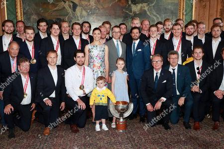 National ice hockey team royal audience, Stockholm