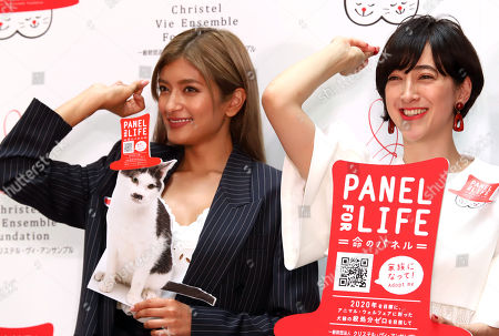 Editorial picture of Panel for Life press conference, Tokyo, Japan - 22 May 2018