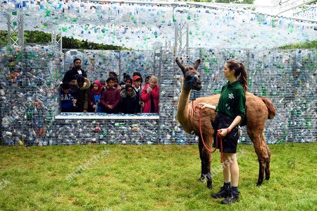Stock Picture of A zoo worker and Llama passes by a sculpture 'Waste of Space' by British artist Nick Wood at London Zoo in London, Britain, 24 May 2018. Waste of Space is an installation made from 15,000 discarded single use bottles collected from London's waterways. The sculpture represents the amount of single use bottle that are purchased every minute in Britain.