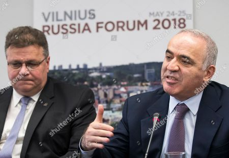 Linas Linkevicius, Garry Kasparov. Prominent Russian opposition figure and chess champion Garry Kasparov, right, Lithuania's Minister of Foreign Affairs Linas Linkevicius, left, speaks as Lithuania's Minister of Foreign Affairs Linas Linkevicius, left, listens during a news conference at the end of a fifth Vilnius Russia Forum at the Esperanza hotel in Trakai district, some 50 kms (31 miles) west of the capital Vilnius, Lithuania, . The annual forum discusses topical issues of Russian domestic and foreign policy