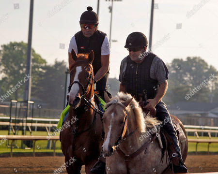 Justify, left, with exercise rider Humberto Gomez aboard, is led back to Barn 33 by assistant trainer Jimmy Barnes, right, after a morning gallop at Churchill Downs in Louisville, Ky., . Justify, is pointing to the 150th Belmont Stakes horse race in New York in June