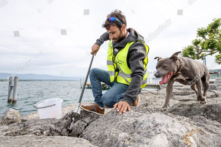 Stock Picture of Switzerland's skipper Alan Roura, near his dog Louna, collects garbage in the Geneva harbor of the Lake of Geneva during the ninth edition of the 'Net'Leman' lake cleaning event, in Geneva, Switzerland, 27 May 2018. Over a thousand volunteers took part in the annual lake cleanup event.