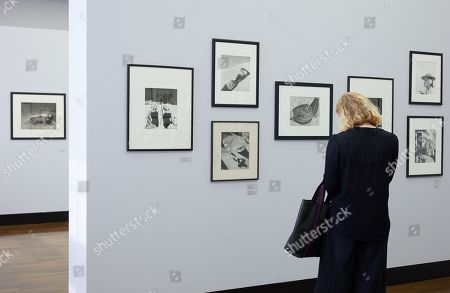 Visitors look at photographs by Bert Stern during a press preview of 'Between Art & Fashion. Photographs from the Collection of Carla Sozzani' at the Helmut Newton Foundation in Berlin, Germany, 01 June 2018. The exhibition runs from 02 June to 18 November.