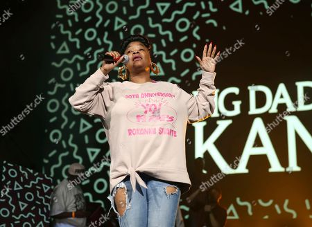 Rapper Roxanne Shante performs at the Yo! MTV Raps: 30TH Anniversary Experience at the Barclays Center, in New York
