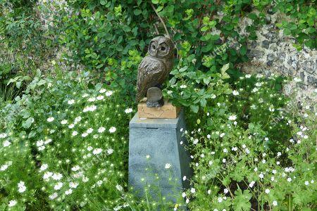 Tawny Owl by John Penrose