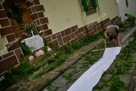 A man places a piece of white fabric in front of an altar before the Corpus Christi procession, in the small town of Bera de Bidasoa, northern Spain, . The day of Corpus Christi, dated on May 31, has ceased to be a public holiday in Spain. Then, people celebrated today this holy day, an ancient Catholic tradition for fervent believers