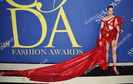 Di Mondo arrives at the CFDA Fashion Awards at the Brooklyn Museum, in New York