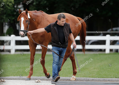 Assistant trainer Jimmy Barnes leads Kentucky Derby and Preakness Stakes winner Justify out to be wiped down after arriving at Belmont Park, in Elmont, N.Y. Justify will attempt to become the 13th Triple Crown winner when he races in the 150th running of the Belmont Stakes horse race on Saturday