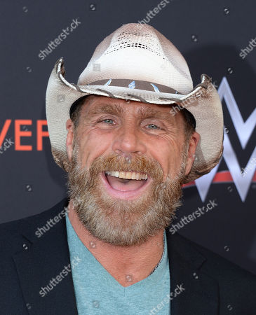 Stock Photo of Shawn Michaels