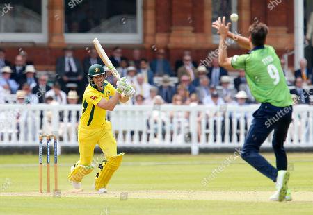 Tim Paine of Australia batting , Steve Finn of Middlesex drops a chance