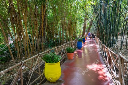 Jardin Majorelle Botanical Garden, former owners Yves Saint-Laurent and Pierre Berge, Marrakech, Morocco
