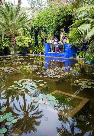 Pond, Jardin Majorelle Botanical Garden, former owners Yves Saint-Laurent and Pierre Berge, Marrakech, Morocco