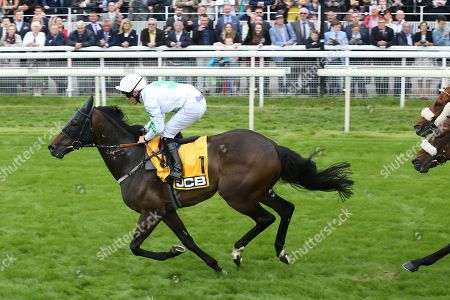Stock Image of ABOVE THE REST (1) ridden by jockey Ben Curtis and trained by David Barron winning The JCB Handicap Stakes over 7f (£40,000) during the Macmillan Charity Raceday at York Racecourse, York. Picture by Mick Atkins