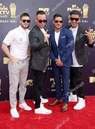 Jersey Shore cast - Vinny Guadagnino, Mike Sorrentino, Ronnie Ortiz-Magro and Paul DelVecchio