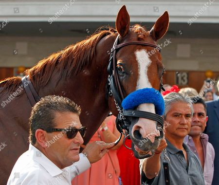 Triple Crown winner Justify stops for photos as he is led around the paddock for fans at Churchill Downs in Louisville, Ky., . At right is groom Eduardo Luna and at left is assistant trainer Jimmy Barnes